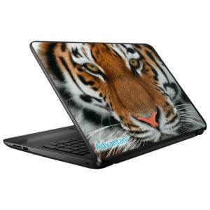Advantan Laptop Skins